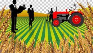 Why Is A Rural Entrepreneur?