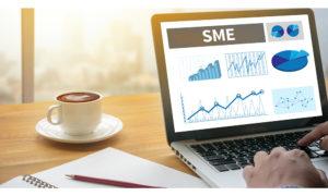 ERP for SME – Small and Medium Enterprises